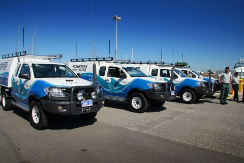 fleet-signs-toyota-hilux