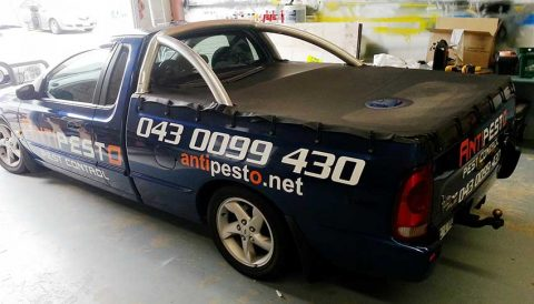 Cast-Vinyl-lettering-on-a-car